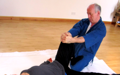 Bill Palmer: the master of Movement Shiatsu
