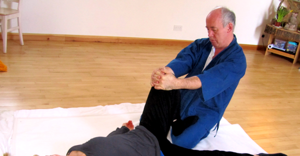 Interview : Bill Palmer, le maître du Movement Shiatsu