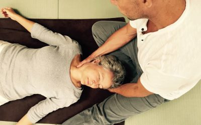 Interview: Mike Mandl, organizer of the 2017 Shiatsu European Congress