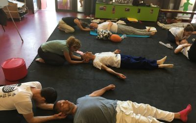 Shiatsu: therapy or well-being?