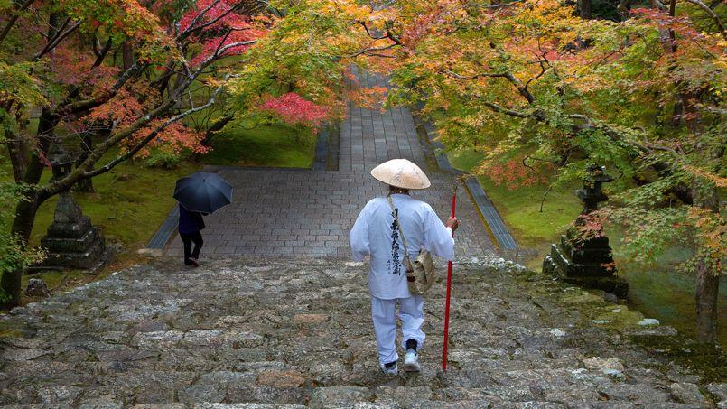 Shoshin, pour garder l'esprit ouvert en Shiatsu